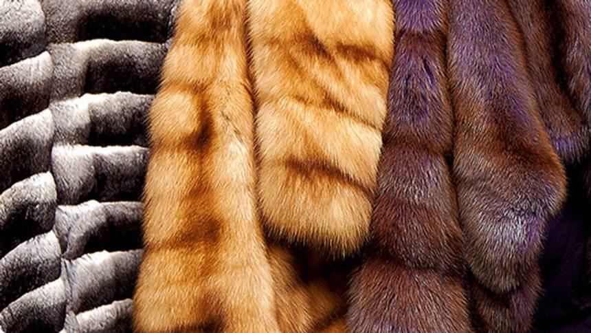 Где можно купить меховые изделия высокого качества